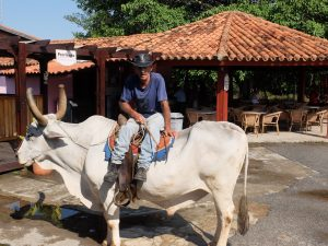 Vinales, Cuba / Travels by Silviu Tolu on https://silviutolu.com